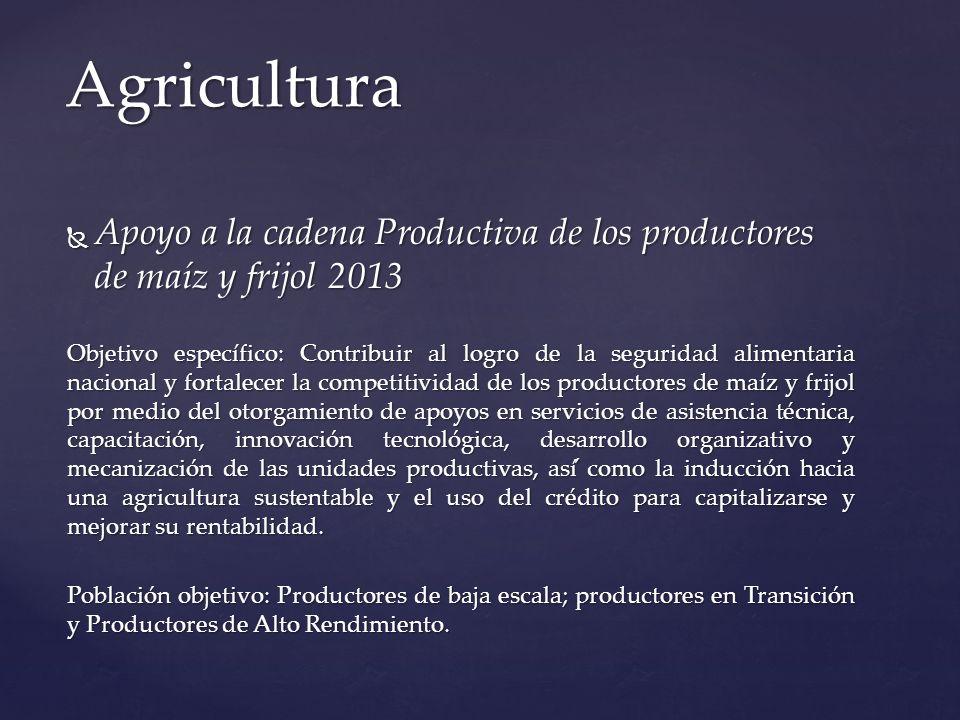 Seguro Agropecuario para la Recuperación de la Actividad Productiva Seguro Agropecuario para la Recuperación de la Actividad Productiva Objetivo Específico: Mantener y profundizar los esquemas de administración de riesgos en productores en lo individual con el fin de evitar carteras vencidas ante la ocurrencia de un siniestro que afecte a la actividad agropecuaria, en primera instancia protegiendo las inversiones que realiza (tanto con crédito, como con recurso propios) para asegurar una capa catastrófica para la reincorporación productiva del asegurado, a través de reducir el coto de las primas que pagan los productores agropecuarios en los Seguros Agropecuarios que contratan.