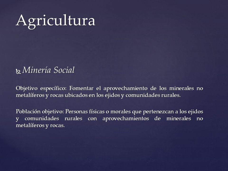 Minería Social Minería Social Objetivo específico: Fomentar el aprovechamiento de los minerales no metalíferos y rocas ubicados en los ejidos y comuni