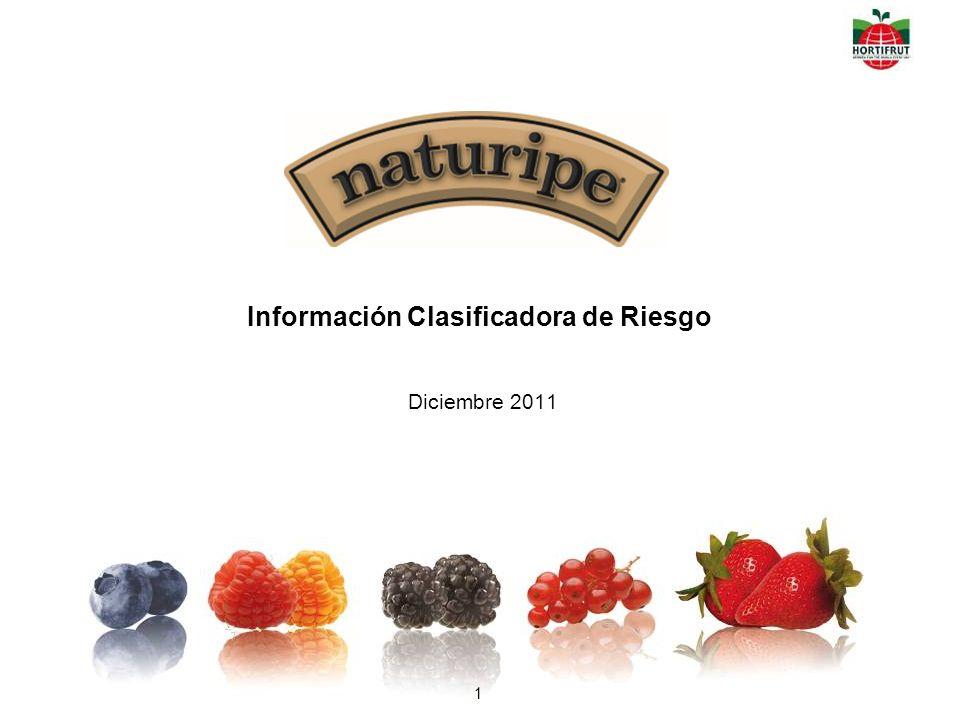 Información Clasificadora de Riesgo Diciembre 2011 1
