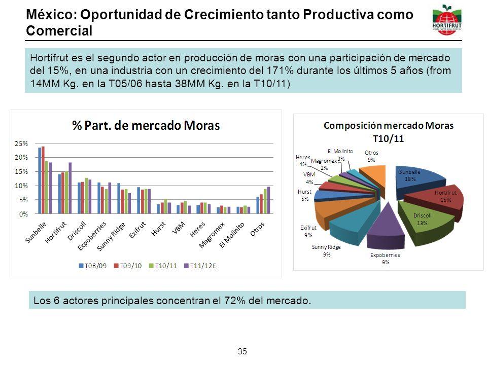 México: Oportunidad de Crecimiento tanto Productiva como Comercial 35 Hortifrut es el segundo actor en producción de moras con una participación de mercado del 15%, en una industria con un crecimiento del 171% durante los últimos 5 años (from 14MM Kg.