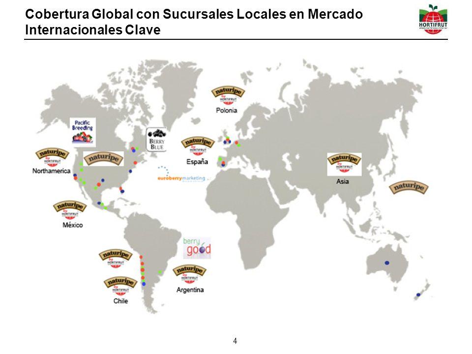 Cobertura Global con Sucursales Locales en Mercado Internacionales Clave 4