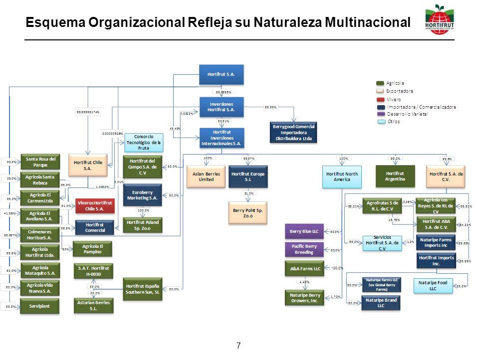 Esquema Organizacional Refleja su Naturaleza Multinacional 7