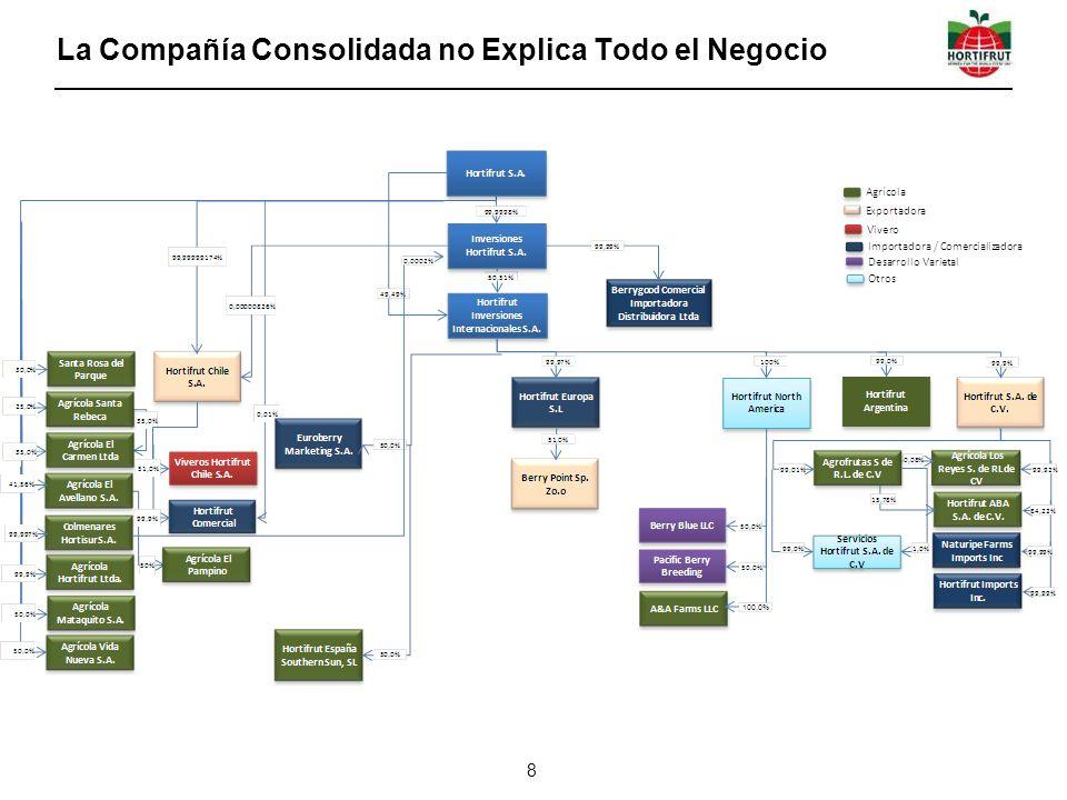 La Compañía Consolidada no Explica Todo el Negocio 8