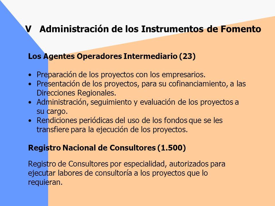 V Administración de los Instrumentos de Fomento Gerencia de Fomento Diseño, rediseño, seguimiento y evaluación de la acción de fomento Coordinación global de la red de fomento Distribución y gestión del presupuesto para la acción de fomento Direcciones Regionales (13) Direccionamiento estratégico de la acción de fomento de su región.