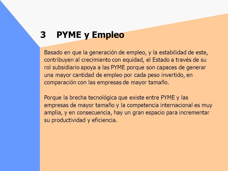 Basado en que la generación de empleo, y la estabilidad de este, contribuyen al crecimiento con equidad, el Estado a través de su rol subsidiario apoya a las PYME porque son capaces de generar una mayor cantidad de empleo por cada peso invertido, en comparación con las empresas de mayor tamaño.