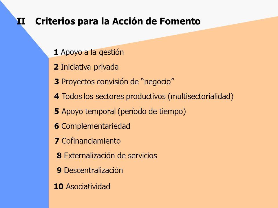 II Criterios para la Acción de Fomento 1 Apoyo a la gestión 2 Iniciativa privada 3 Proyectos convisión de negocio 4 Todos los sectores productivos (multisectorialidad) 5 Apoyo temporal (período de tiempo) 6 Complementariedad 7 Cofinanciamiento 8 Externalización de servicios 9 Descentralización 10 Asociatividad