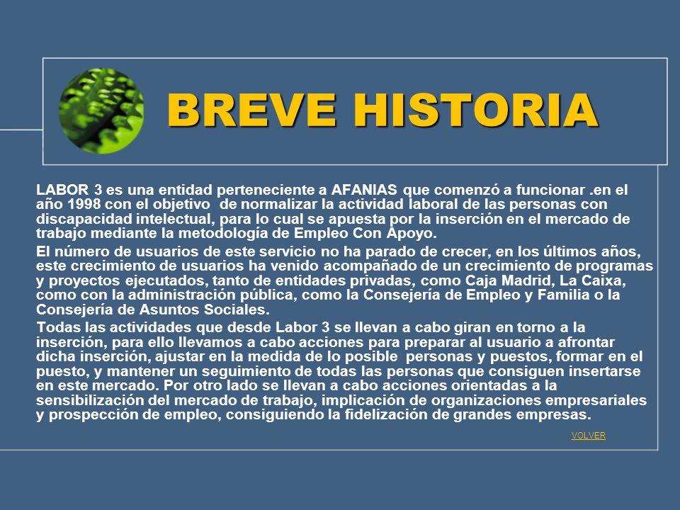 BREVE HISTORIA LABOR 3 es una entidad perteneciente a AFANIAS que comenzó a funcionar.en el año 1998 con el objetivo de normalizar la actividad labora