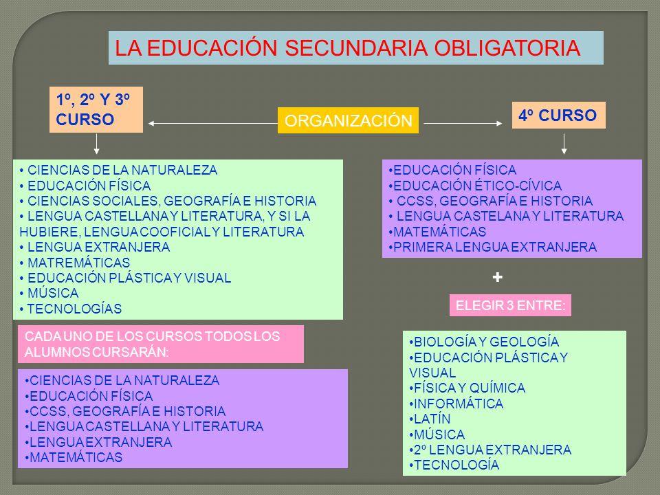 LA EDUCACIÓN SECUNDARIA OBLIGATORIA 1º, 2º Y 3º CURSO ORGANIZACIÓN 4º CURSO CIENCIAS DE LA NATURALEZA EDUCACIÓN FÍSICA CIENCIAS SOCIALES, GEOGRAFÍA E