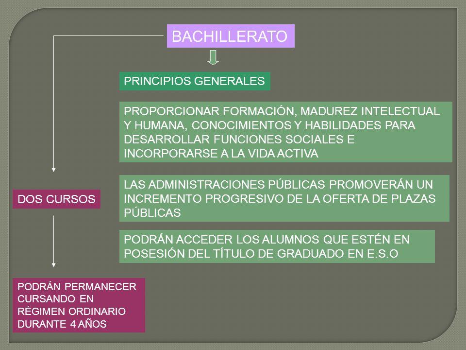 BACHILLERATO PRINCIPIOS GENERALES PROPORCIONAR FORMACIÓN, MADUREZ INTELECTUAL Y HUMANA, CONOCIMIENTOS Y HABILIDADES PARA DESARROLLAR FUNCIONES SOCIALE