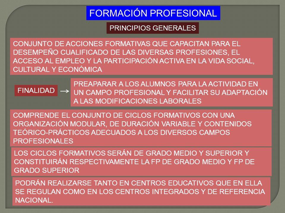 FORMACIÓN PROFESIONAL PRINCIPIOS GENERALES CONJUNTO DE ACCIONES FORMATIVAS QUE CAPACITAN PARA EL DESEMPEÑO CUALIFICADO DE LAS DIVERSAS PROFESIONES, EL