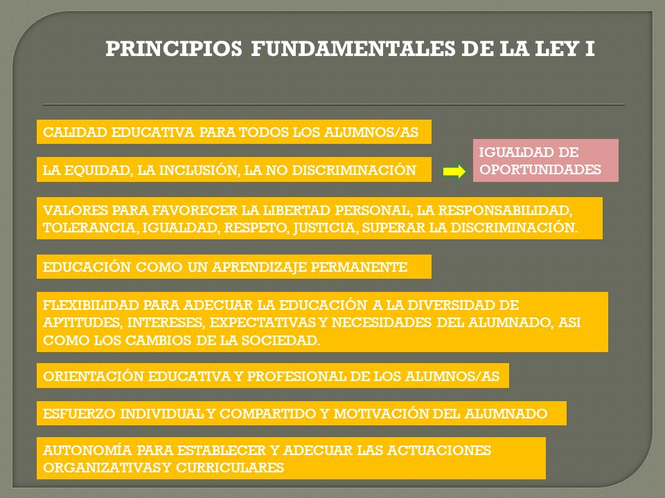 PRINCIPIOS FUNDAMENTALES DE LA LEY I CALIDAD EDUCATIVA PARA TODOS LOS ALUMNOS/AS LA EQUIDAD, LA INCLUSIÓN, LA NO DISCRIMINACIÓN VALORES PARA FAVORECER