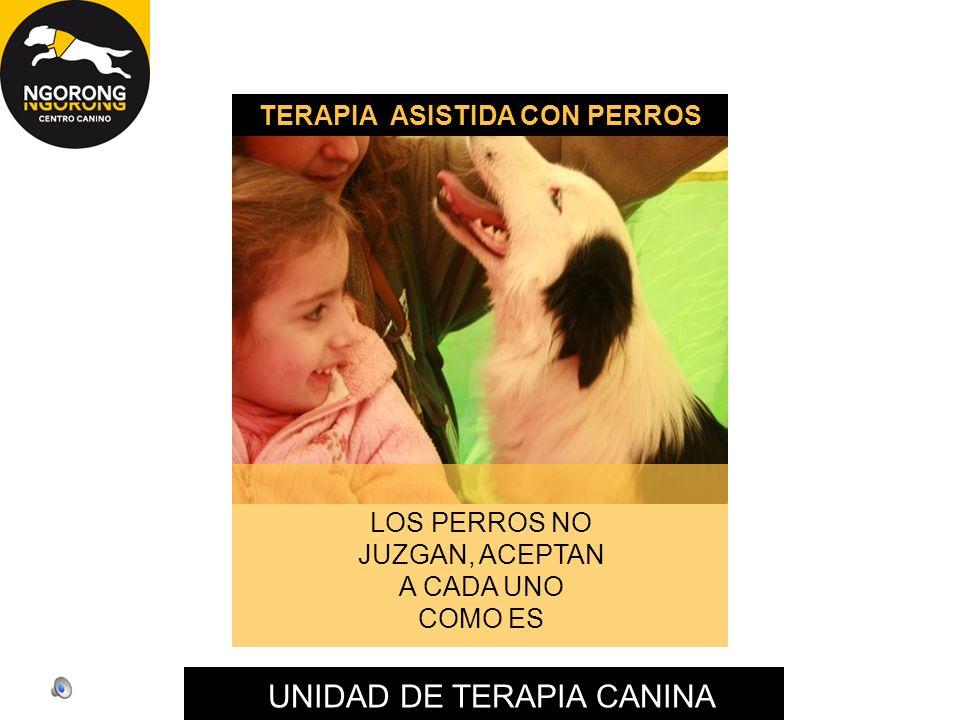 UNIDAD DE TERAPIA CANINA LOS PERROS NO JUZGAN, ACEPTAN A CADA UNO COMO ES TERAPIA ASISTIDA CON PERROS