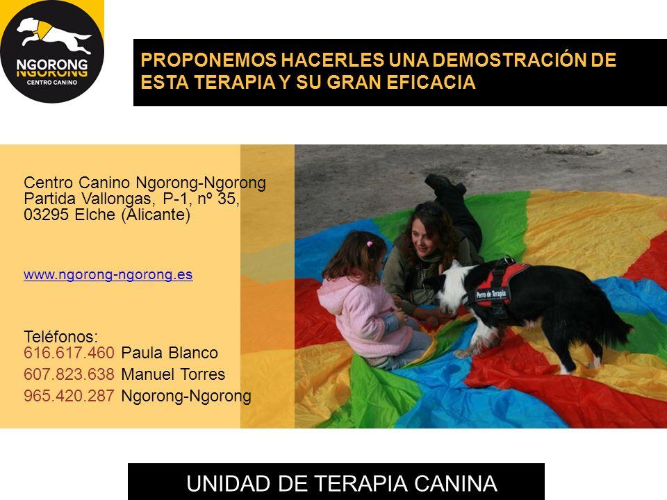 UNIDAD DE TERAPIA CANINA PROPONEMOS HACERLES UNA DEMOSTRACIÓN DE ESTA TERAPIA Y SU GRAN EFICACIA Centro Canino Ngorong-Ngorong Partida Vallongas, P-1,