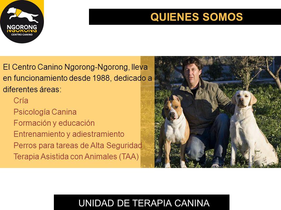 UNIDAD DE TERAPIA CANINA El Centro Canino Ngorong-Ngorong, lleva en funcionamiento desde 1988, dedicado a diferentes áreas: Cría Psicología Canina For