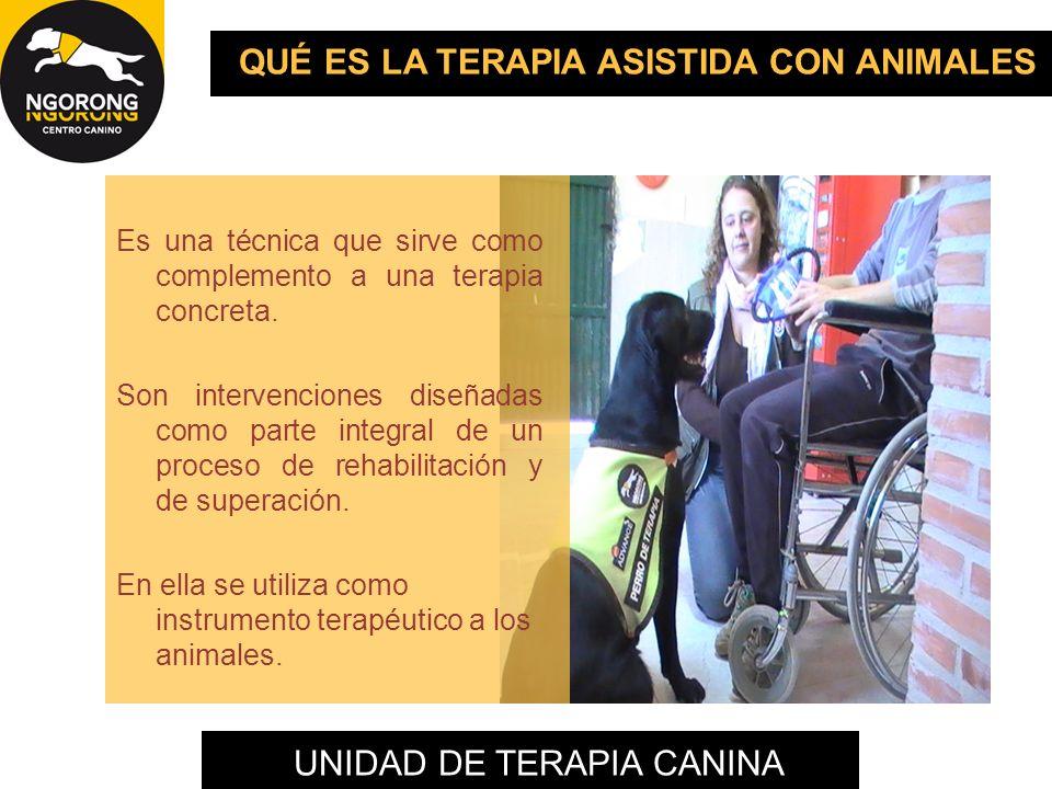 UNIDAD DE TERAPIA CANINA QUÉ ES LA TERAPIA ASISTIDA CON ANIMALES Es una técnica que sirve como complemento a una terapia concreta. Son intervenciones