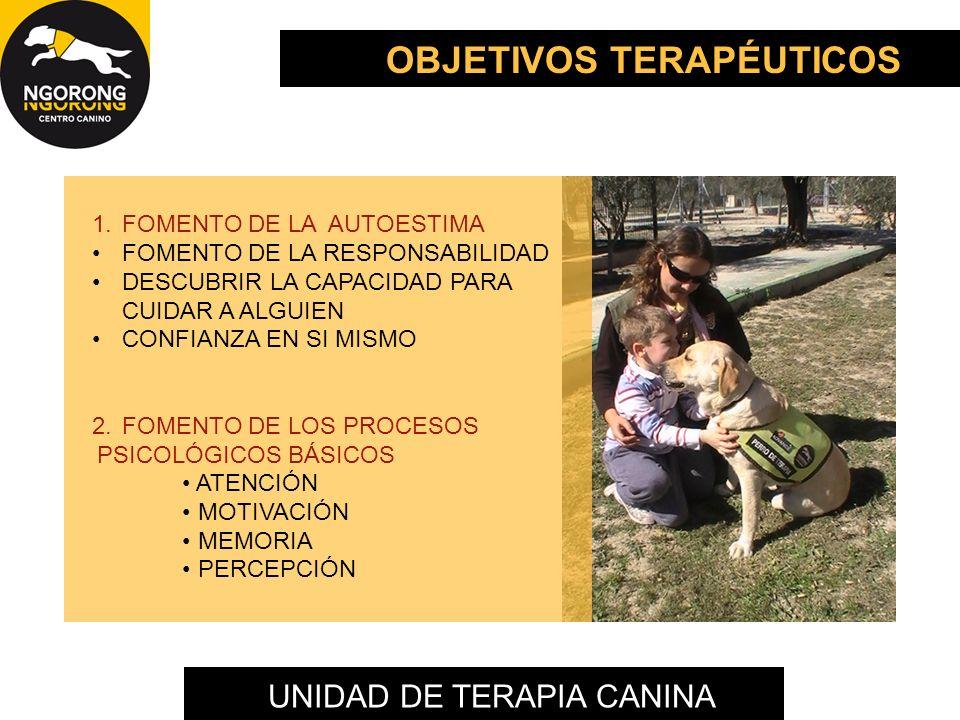 UNIDAD DE TERAPIA CANINA 3.FOMENTO DE LOS ASPECTOS BÁSICOS DE LA COMUNICACIÓN CONTACTO OCULAR SONRISA SOCIAL SOCIALIZACIÓN EMISIONES VOCÁLICAS CONTACTO FÍSICO DESARROLLO DE LA AFECTIVIDAD ESTABLECER VÍNCULOS AFECTIVOS 4.POTENCIAR EL BIENESTAR EMOCIONAL Y FÍSICO REDUCCIÓN DEL ESTRÉS Y ANSIEDAD REDUCCIÓN DE MOVIMIENTOS ESTEREOTIPADOS MEJORAR ASPECTOS COMPORTAMENTALES SENSIBILIDAD RELAJACIÓN OBJETIVOS TERAPÉUTICOS