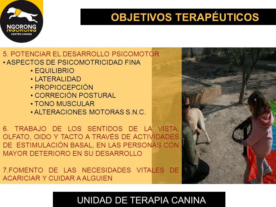 UNIDAD DE TERAPIA CANINA 5. POTENCIAR EL DESARROLLO PSICOMOTOR ASPECTOS DE PSICOMOTRICIDAD FINA EQUILIBRIO LATERALIDAD PROPIOCEPCIÓN CORRECIÓN POSTURA