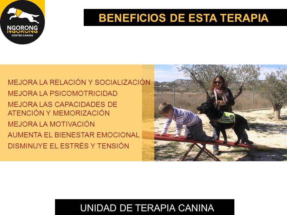 UNIDAD DE TERAPIA CANINA BENEFICIOS DE ESTA TERAPIA MEJORA LA RELACIÓN Y SOCIALIZACIÓN MEJORA LA PSICOMOTRICIDAD MEJORA LAS CAPACIDADES DE ATENCIÓN Y