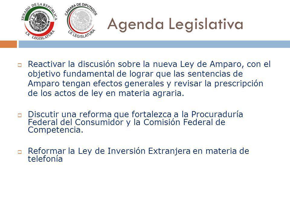 Agenda Legislativa Reactivar la discusión sobre la nueva Ley de Amparo, con el objetivo fundamental de lograr que las sentencias de Amparo tengan efectos generales y revisar la prescripción de los actos de ley en materia agraria.