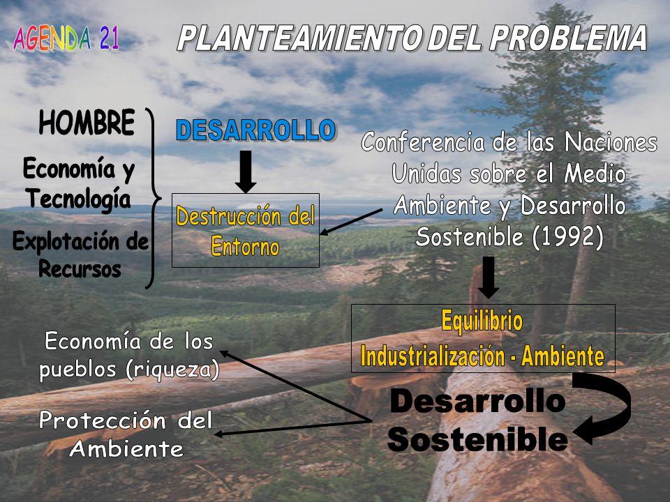 Analizar la importancia que tiene la creación de la organización Agenda 21 para resolver los problemas de conservación del medio ambiente y el desarrollo sostenible a nivel mundial desde sus inicios hasta la fecha actual.