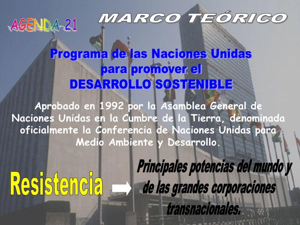 Aprobado en 1992 por la Asamblea General de Naciones Unidas en la Cumbre de la Tierra, denominada oficialmente la Conferencia de Naciones Unidas para