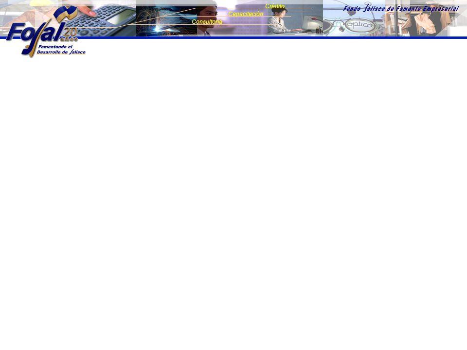 SIGUIENTE Consultoría Crédito Capacitación LA MEJOR OPCIÓN DE FINANCIAMIENTO PARA LA MyPE EN JALISCO.