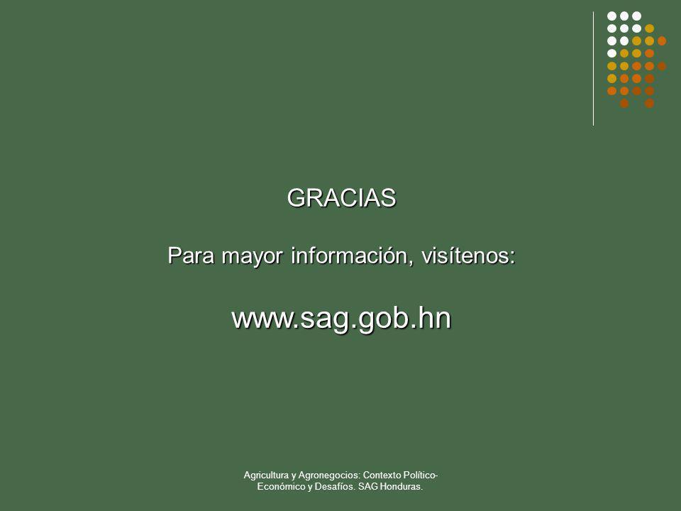 Agricultura y Agronegocios: Contexto Político- Económico y Desafíos. SAG Honduras. GRACIAS Para mayor información, visítenos: www.sag.gob.hn