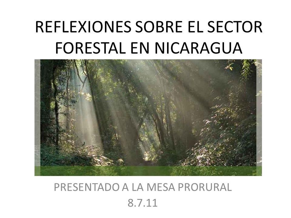 REFLEXIONES SOBRE EL SECTOR FORESTAL EN NICARAGUA PRESENTADO A LA MESA PRORURAL 8.7.11