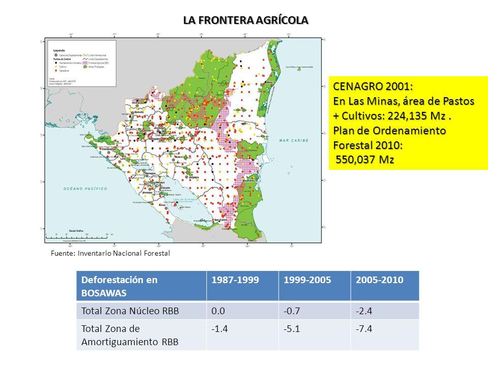 LA FRONTERA AGRÍCOLA Fuente: Inventario Nacional Forestal CENAGRO 2001: En Las Minas, área de Pastos + Cultivos: 224,135 Mz.