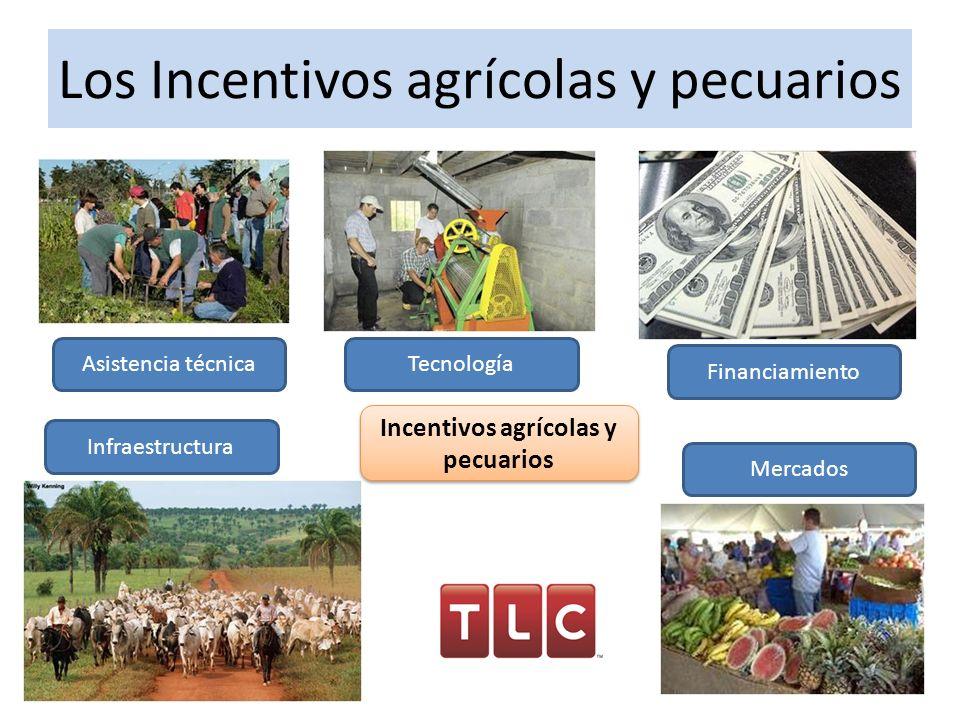 Los Incentivos agrícolas y pecuarios Asistencia técnicaTecnología Financiamiento Infraestructura Mercados Incentivos agrícolas y pecuarios