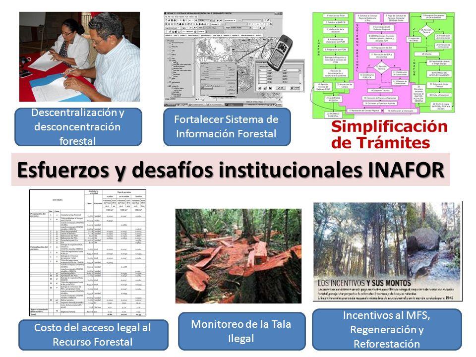 Esfuerzos y desafíos institucionales INAFOR Descentralización y desconcentración forestal Monitoreo de la Tala Ilegal Costo del acceso legal al Recurso Forestal Fortalecer Sistema de Información Forestal Incentivos al MFS, Regeneración y Reforestación