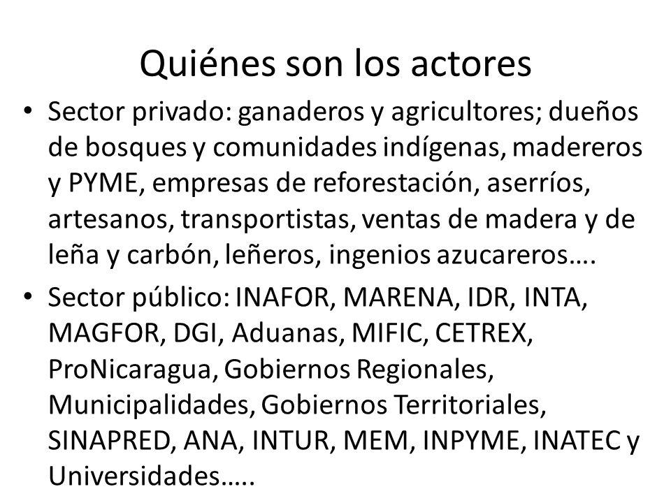 Quiénes son los actores Sector privado: ganaderos y agricultores; dueños de bosques y comunidades indígenas, madereros y PYME, empresas de reforestación, aserríos, artesanos, transportistas, ventas de madera y de leña y carbón, leñeros, ingenios azucareros….