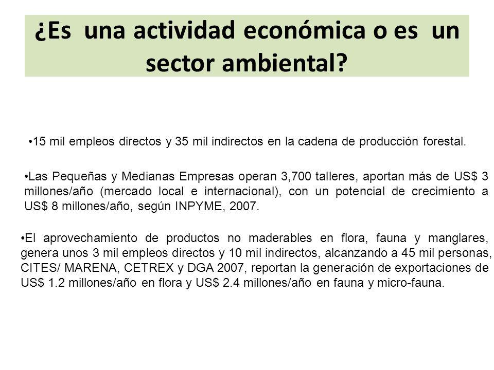 ¿Es una actividad económica o es un sector ambiental.