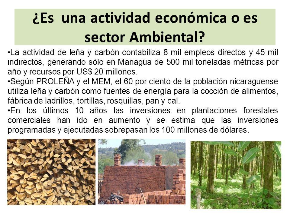 ¿Es una actividad económica o es sector Ambiental.