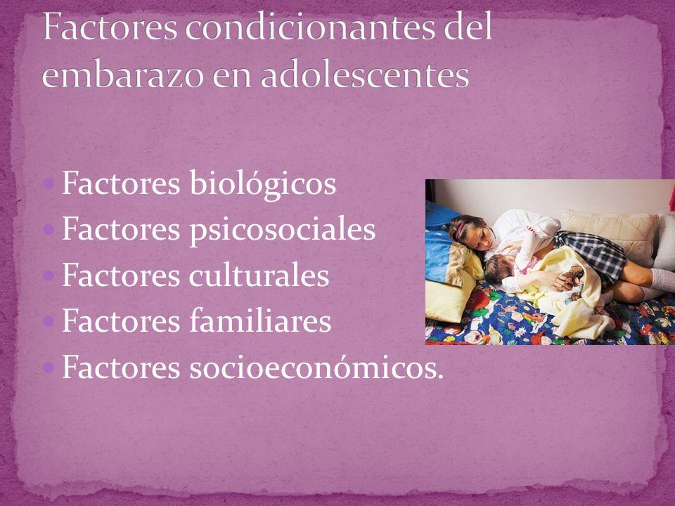 Factores biológicos Factores psicosociales Factores culturales Factores familiares Factores socioeconómicos.