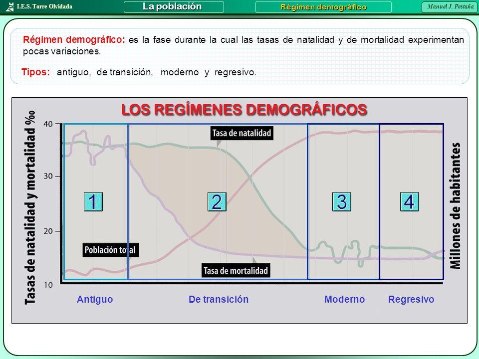I.E.S. Torre Olvidada Manuel J. Pestaña La población Régimen demográfico Régimen demográfico: es la fase durante la cual las tasas de natalidad y de m