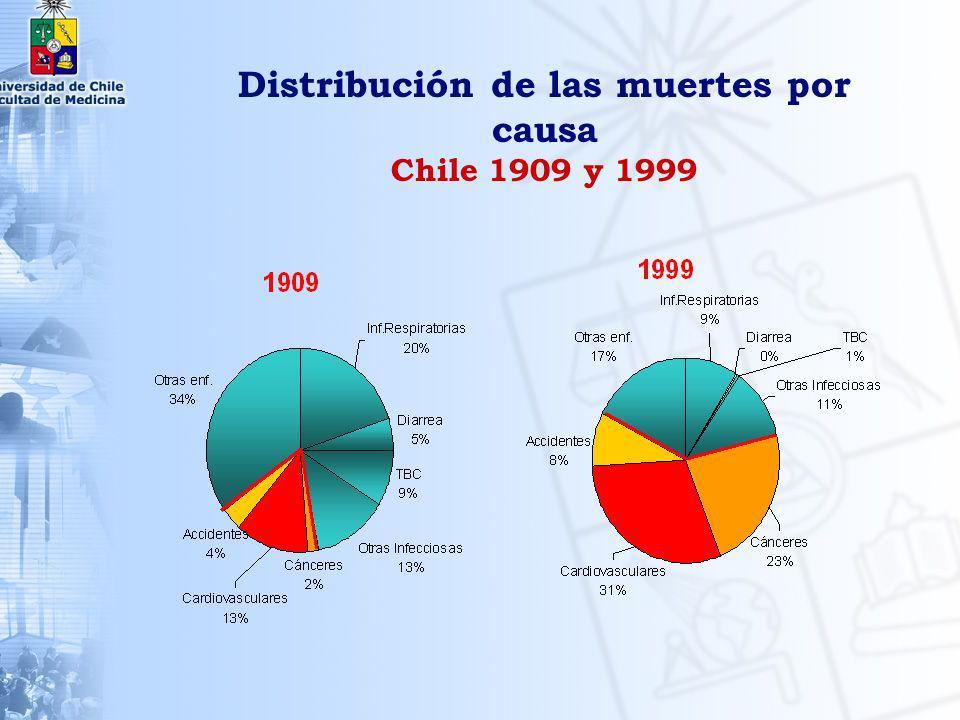 SITUACIÓN ACTUAL DE LA SALUD DE LA MUJER EN CHILE
