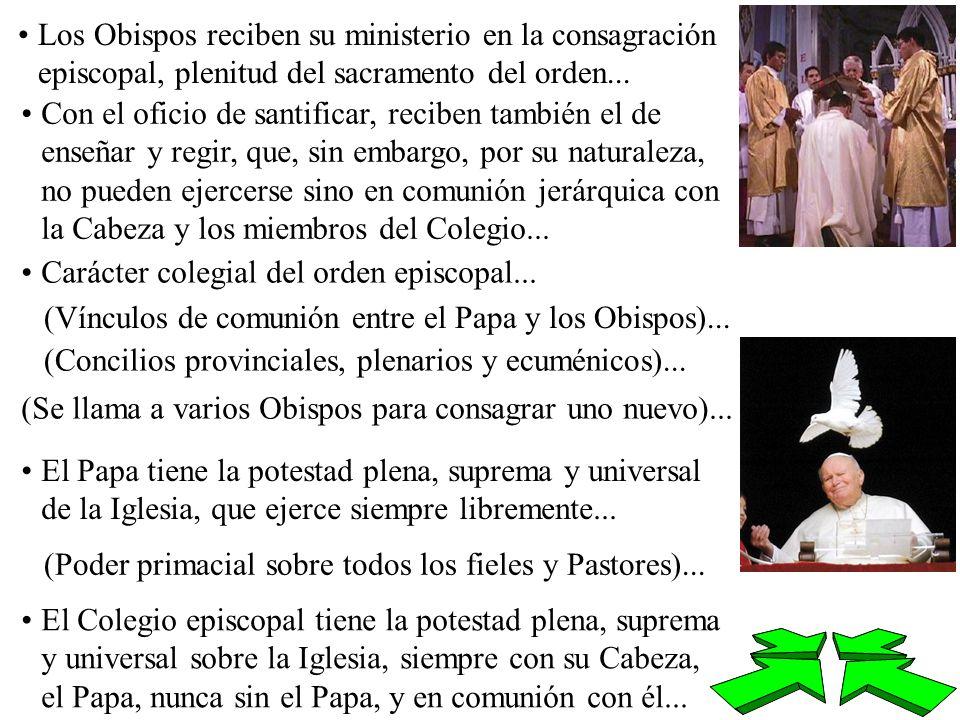 Los Obispos reciben su ministerio en la consagración episcopal, plenitud del sacramento del orden... Con el oficio de santificar, reciben también el d