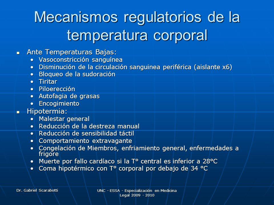 Dr. Gabriel Scarabotti UNC - ESSA - Especialización en Medicina Legal 2009 - 2010 Mecanismos regulatorios de la temperatura corporal Ante Temperaturas
