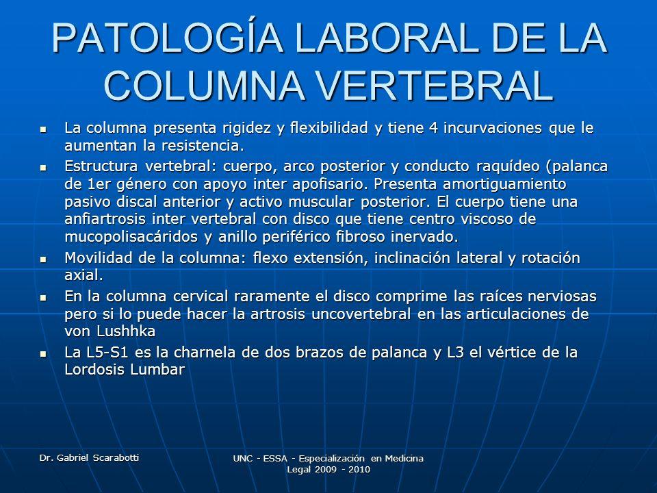 Dr. Gabriel Scarabotti UNC - ESSA - Especialización en Medicina Legal 2009 - 2010 PATOLOGÍA LABORAL DE LA COLUMNA VERTEBRAL La columna presenta rigide