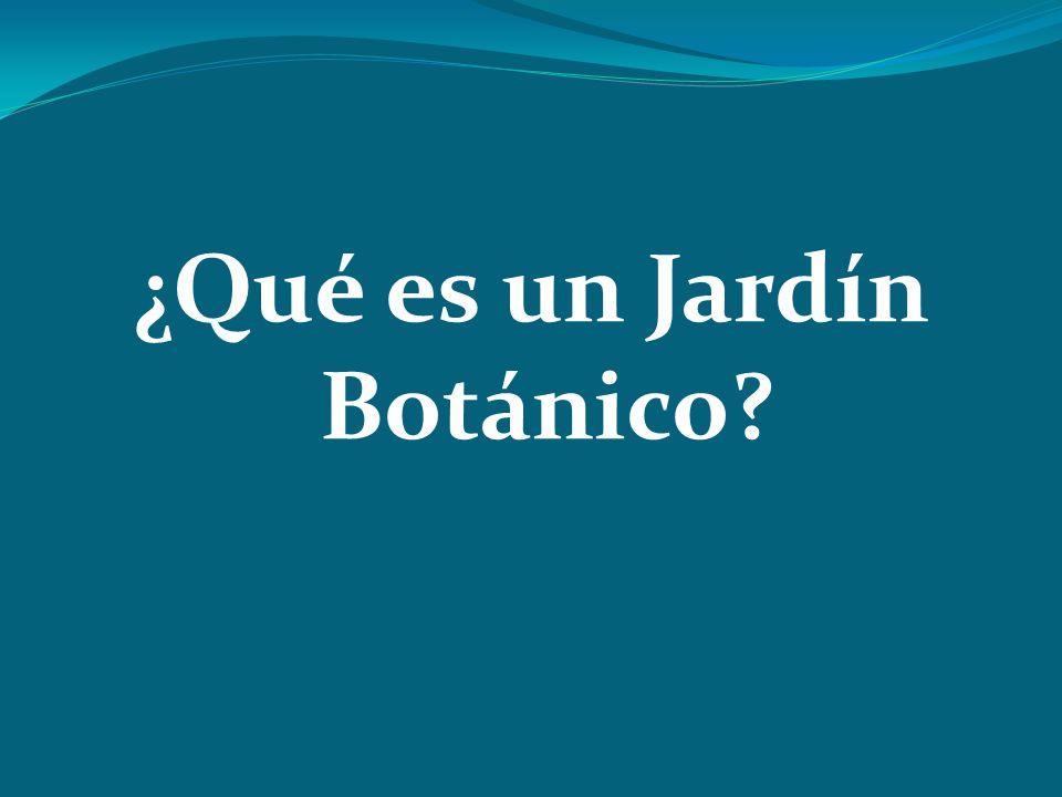 ¿Qué es un Jardín Botánico?