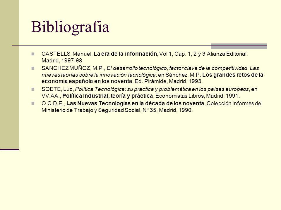 Bibliografia CASTELLS, Manuel, La era de la información, Vol 1, Cap. 1, 2 y 3 Alianza Editorial, Madrid, 1997-98 SANCHEZ MUÑOZ, M.P., El desarrollo te
