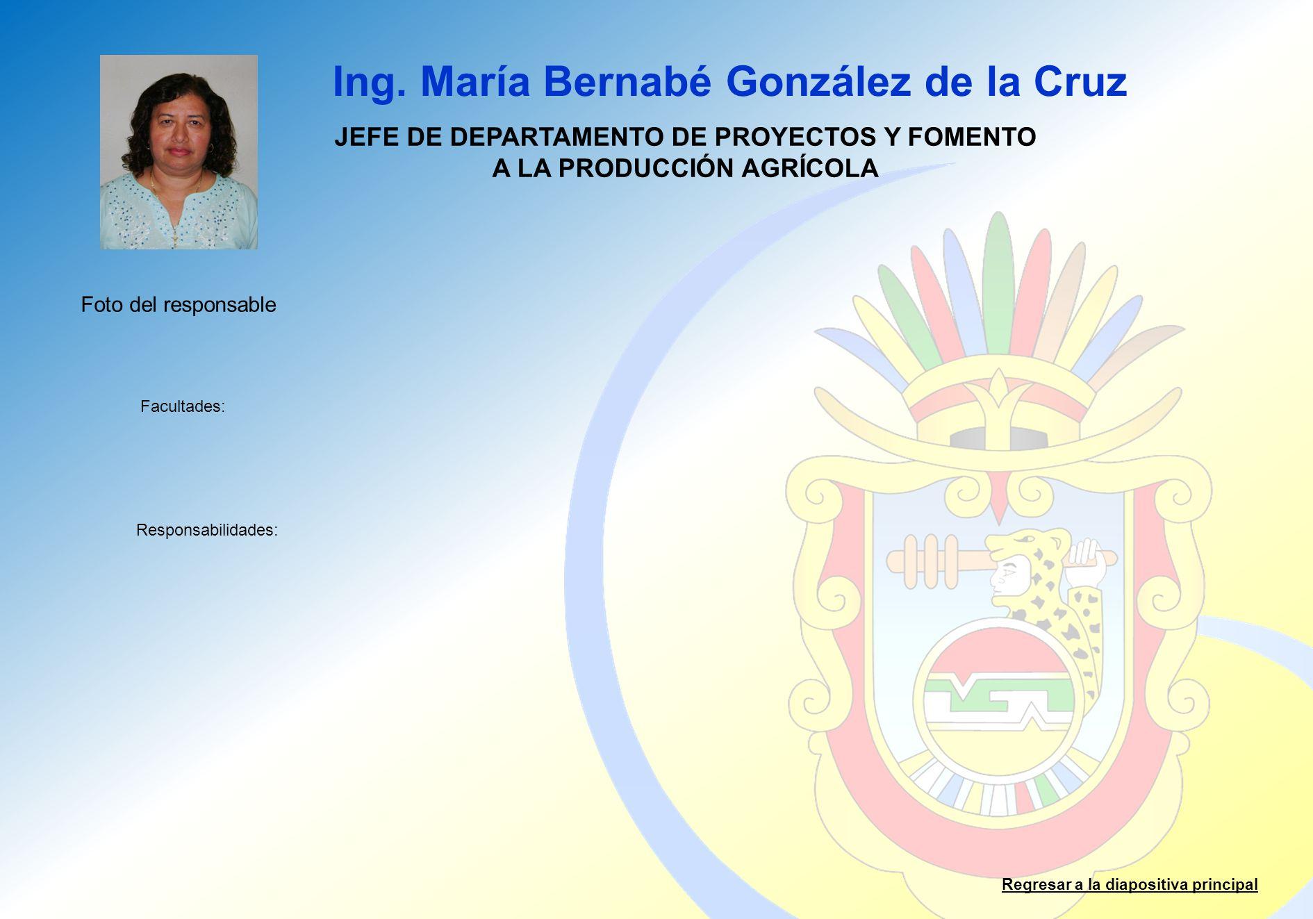 Ing. María Bernabé González de la Cruz Facultades: Responsabilidades: Regresar a la diapositiva principal JEFE DE DEPARTAMENTO DE PROYECTOS Y FOMENTO