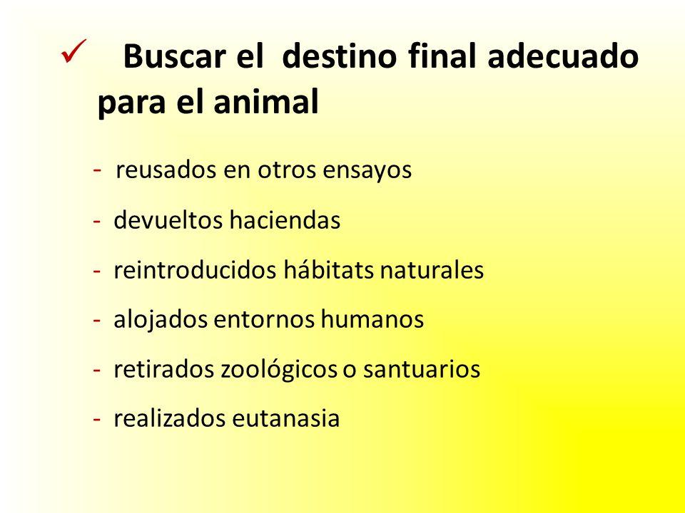 - reusados en otros ensayos - devueltos haciendas - reintroducidos hábitats naturales - alojados entornos humanos - retirados zoológicos o santuarios - realizados eutanasia Buscar el destino final adecuado para el animal