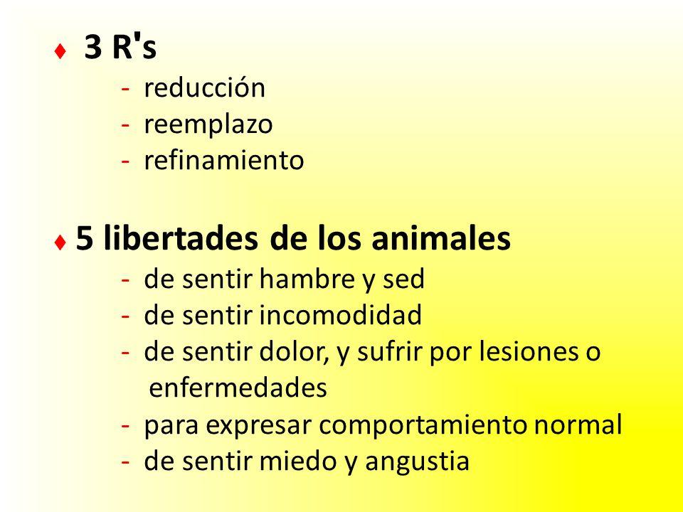 3 R s - reducción - reemplazo - refinamiento 5 libertades de los animales - de sentir hambre y sed - de sentir incomodidad - de sentir dolor, y sufrir por lesiones o enfermedades - para expresar comportamiento normal - de sentir miedo y angustia