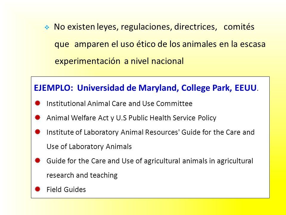 No existen leyes, regulaciones, directrices, comités que amparen el uso ético de los animales en la escasa experimentación a nivel nacional EJEMPLO: Universidad de Maryland, College Park, EEUU.