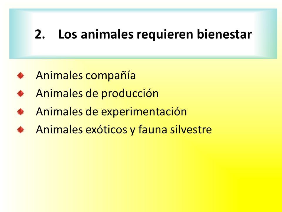 Animales compañía Animales de producción Animales de experimentación Animales exóticos y fauna silvestre 2. Los animales requieren bienestar