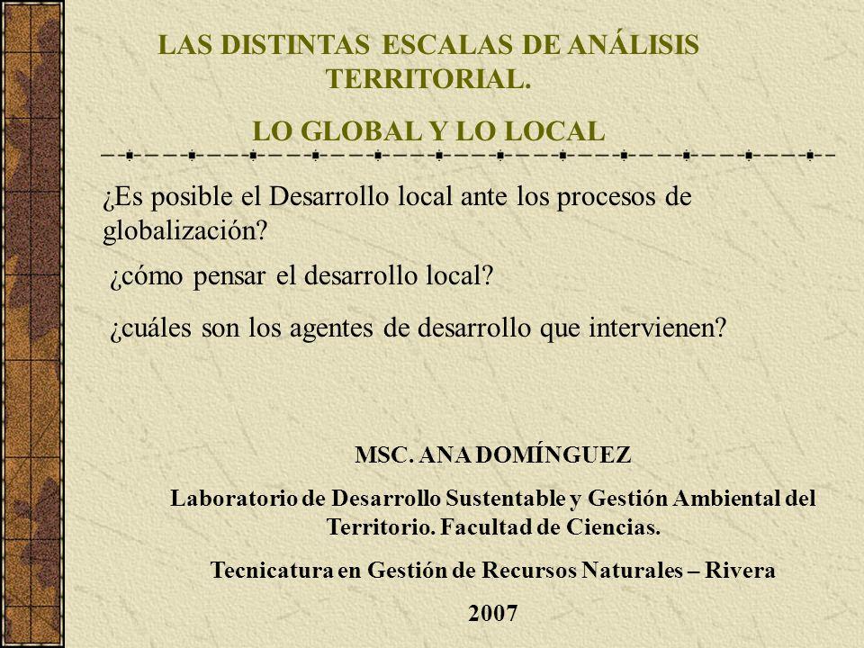 ¿Es posible el Desarrollo local ante los procesos de globalización? LAS DISTINTAS ESCALAS DE ANÁLISIS TERRITORIAL. LO GLOBAL Y LO LOCAL ¿cómo pensar e