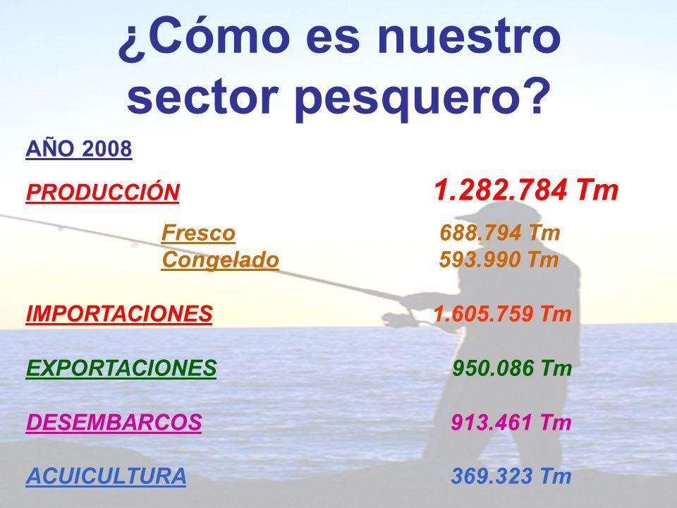 ¿Cómo es nuestro sector pesquero.