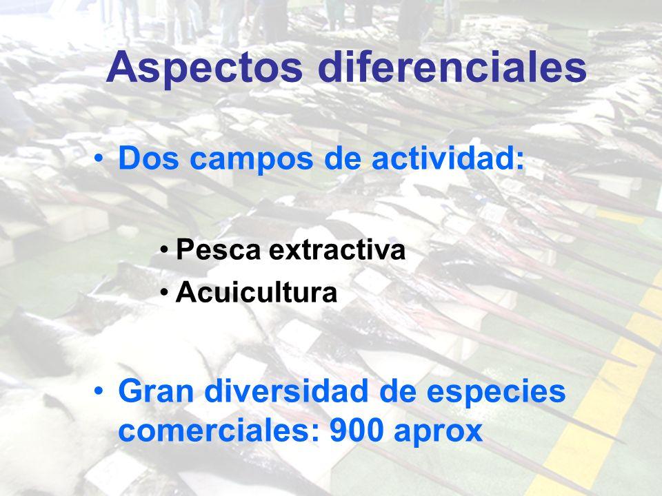 Aspectos diferenciales Dos campos de actividad: Pesca extractiva Acuicultura Gran diversidad de especies comerciales: 900 aprox